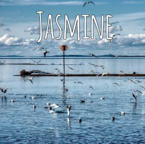 Бит Jasmine