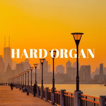 Бит Hard Organ